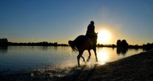 kobieta na koniu nad brzegiem jeziora o zachodzie słońca